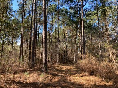 5561 HIGHWAY 98 E, Meadville, MS 39653 - Photo 1