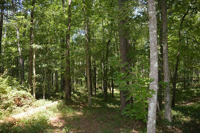 ... HAMP LEA RD, Magnolia, MS 39652 - Photo 2