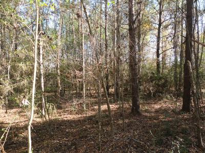0000 OLD CHURCH ROAD NW, WESSON, MS 39191 - Photo 2