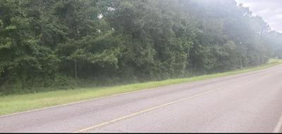 0 QUINLIVIAN RD, Magnolia, MS 39652 - Photo 1