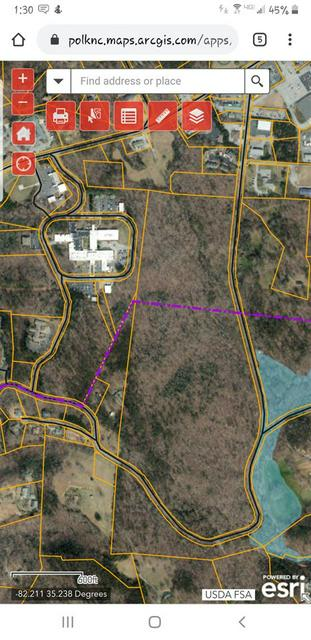 56 ACRES SHUFORD RD., Columbus, NC 28722 - Photo 2