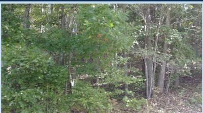 0 DULIN RD, Blacksburg, SC 29702 - Photo 1