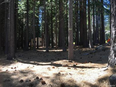 0 2226 MEWUK DRIVE, South Lake Tahoe, CA 96150 - Photo 1