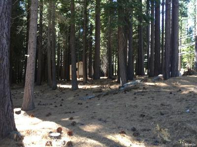 0 2226 MEWUK DRIVE, South Lake Tahoe, CA 96150 - Photo 2