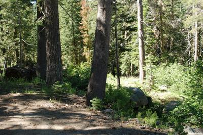 0 US HWY 50/JOHNSON PASS ROAD, Echo Lake, CA 95721 - Photo 2