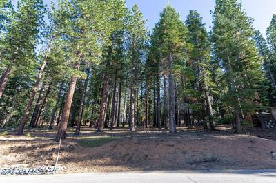 2442 WAGON TRAIN TRL, South Lake Tahoe, CA 96150 - Photo 1