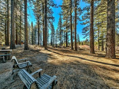 920 SUNSET DR, South Lake Tahoe, CA 96150 - Photo 2