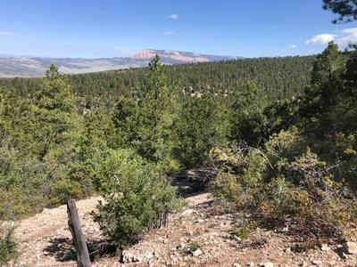 40 ACRES EAST OF HENRIEVILLE, Henrieville, UT 84736 - Photo 2