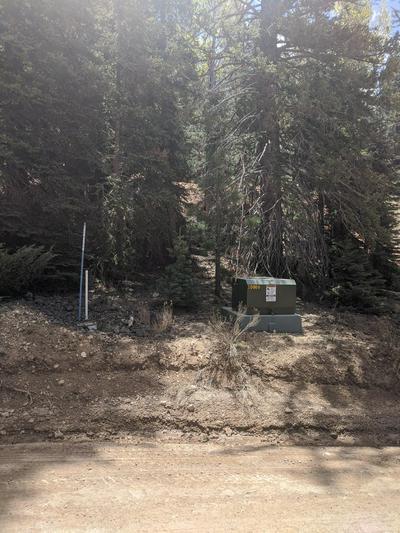 3220 SPRUCE DR, Duck Creek, UT 84762 - Photo 2