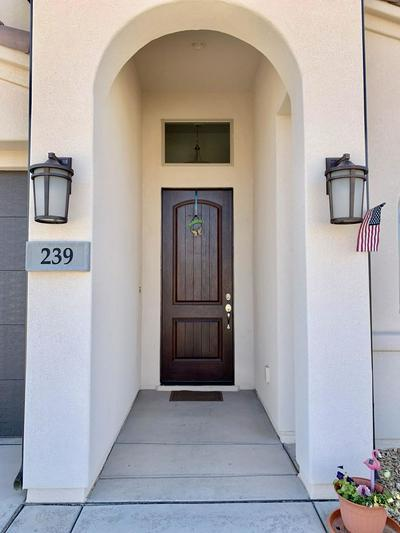 239 W PERIDOT DR, WASHINGTON, UT 84780 - Photo 2