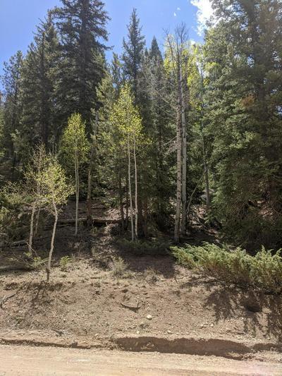 3220 SPRUCE DR, Duck Creek, UT 84762 - Photo 1