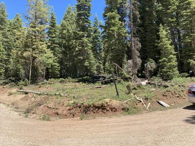 1480 W STRAWBERRY POINT RD # Z-64, Duck Creek, UT 84762 - Photo 1