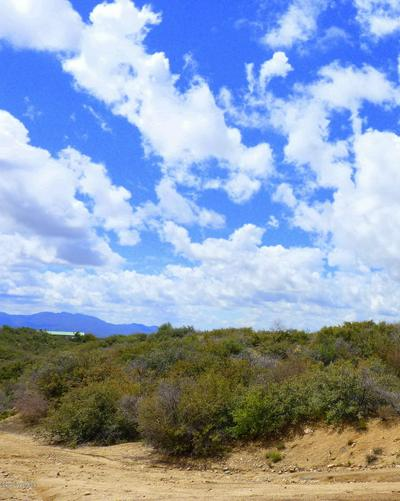 8080 W PUTNAM RD, Wilhoit, AZ 86332 - Photo 2