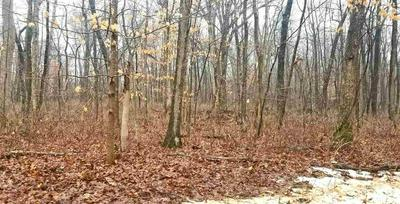 WESTERN LOT W TIMBER DR, PLATTEVILLE, WI 53818 - Photo 1