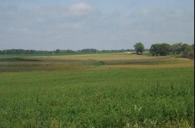 L60 SHANNON RD, Albany, WI 53502 - Photo 2