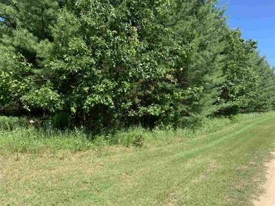 19TH CT LOT 92, Arkdale, WI 54613 - Photo 2