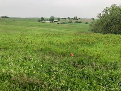 LOT 1 CSM 1918 HWY 39, Blanchardville, WI 53516 - Photo 2