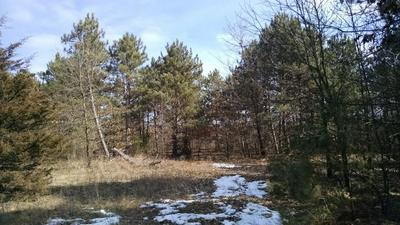 23.75 AC 7TH ST, Avoca, WI 53506 - Photo 2