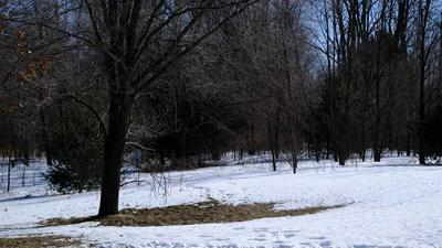 N6508 COUNTY ROAD B, WESTFIELD, WI 53964 - Photo 2