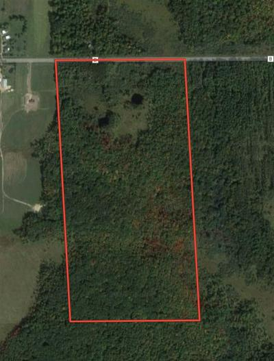 80 AC COUNTY ROAD B, Pittsville, WI 54466 - Photo 2