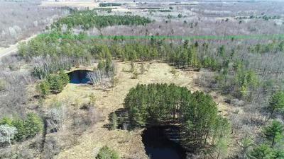 80 AC COUNTY ROAD B, Pittsville, WI 54466 - Photo 1