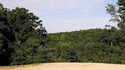 4921 STARLIGHT LN, Cassville, WI 53806 - Photo 2