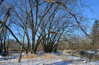10 ACRES COUNTY ROAD V, LA VALLE, WI 53941 - Photo 2