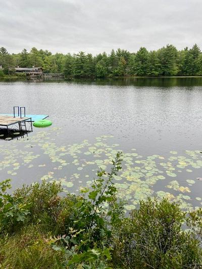 570 BLASS LAKE DR, Lake Delton, WI 53965 - Photo 2