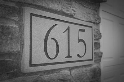 615 SIENNA GLENN WAY, Oregon, WI 53575 - Photo 2