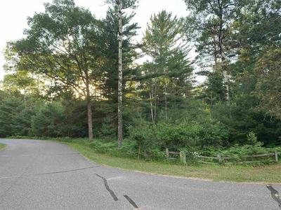 LOT 226 ON FOREST DR., Minocqua, WI 54548 - Photo 1