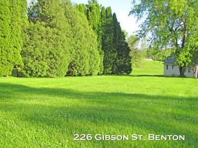 226 GIBSON ST, Benton, WI 53803 - Photo 1