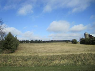 LOT 2 NEWVILLE RD, Waterloo, WI 53594 - Photo 1