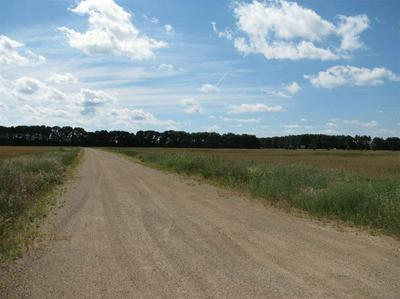 8.46 AC COON ROCK RD, Arena, WI 53503 - Photo 2
