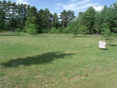 L6 TWIN OAKS CT, PRINCETON, WI 54968 - Photo 1