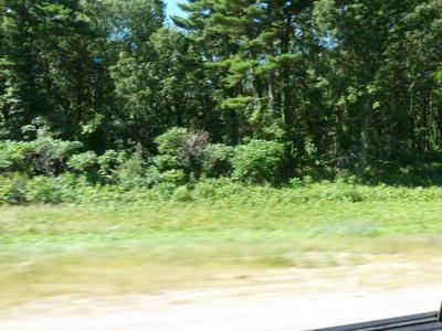 138.55 AC HWY 12, Lake Delton, WI 53940 - Photo 2