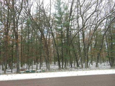 40 AC COUNTY ROAD Z, Arkdale, WI 54613 - Photo 2