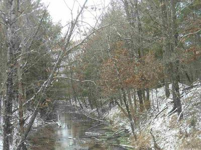 40 AC COUNTY ROAD Z, Arkdale, WI 54613 - Photo 1