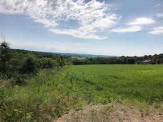 5.67 AC BUOL RD, Belleville, WI 53508 - Photo 2