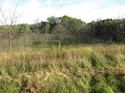 LOT 4 3RD DR, WESTFIELD, WI 53964 - Photo 2
