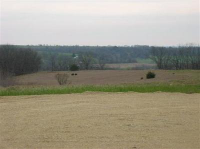 L4 HWY 78, Blanchardville, WI 53516 - Photo 2