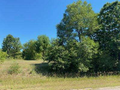 LOT 1 N FRONT ST, Coloma, WI 54930 - Photo 1