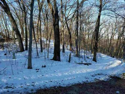 LOT 13 UPPER WYOMING RD, Dodgeville, WI 53533 - Photo 2