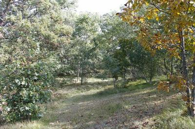L6 HAMMER RD, Albany, WI 53502 - Photo 2