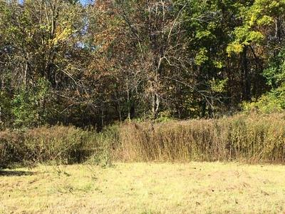 LOT 4 LOST RIDGE LN, Boscobel, WI 53805 - Photo 1