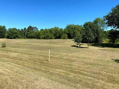 LOT 2 N FRONT ST, Coloma, WI 54930 - Photo 2
