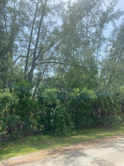 3551 STABILE RD, OTHER, FL 33956 - Photo 2