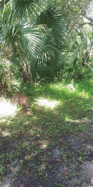 5303 LAKE LN, IMMOKALEE, FL 34142 - Photo 2