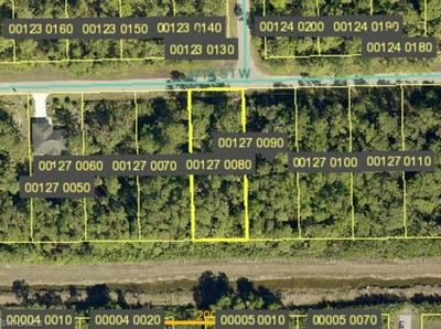 3125 47TH ST W, LEHIGH ACRES, FL 33971 - Photo 1