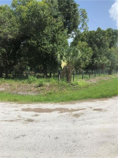 925 N DEER ST, Clewiston, FL 33440 - Photo 2