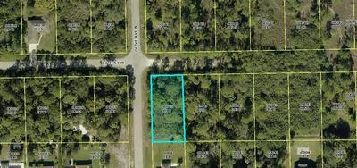 3113 17TH ST W, Lehigh Acres, FL 33971 - Photo 2